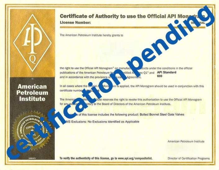API 6A 6D 602 600 Certificate